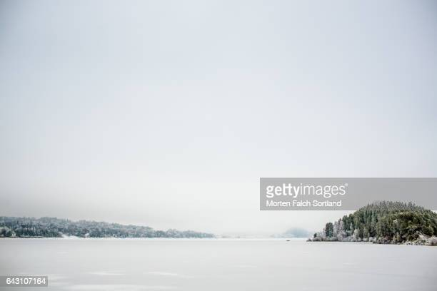 snow, sky and trees - winter sports event stock pictures, royalty-free photos & images