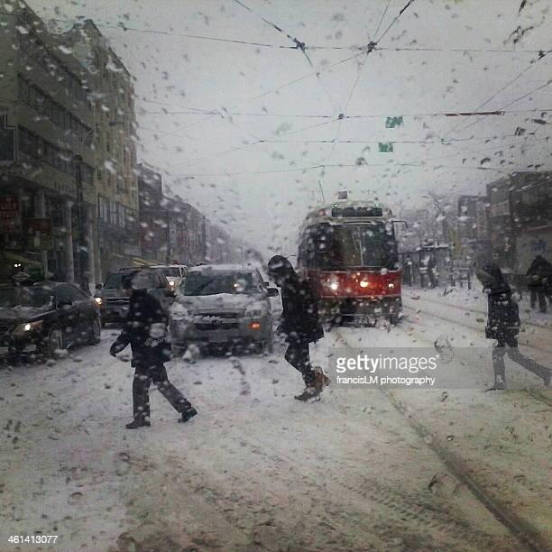 snow storm - francis winter stock-fotos und bilder