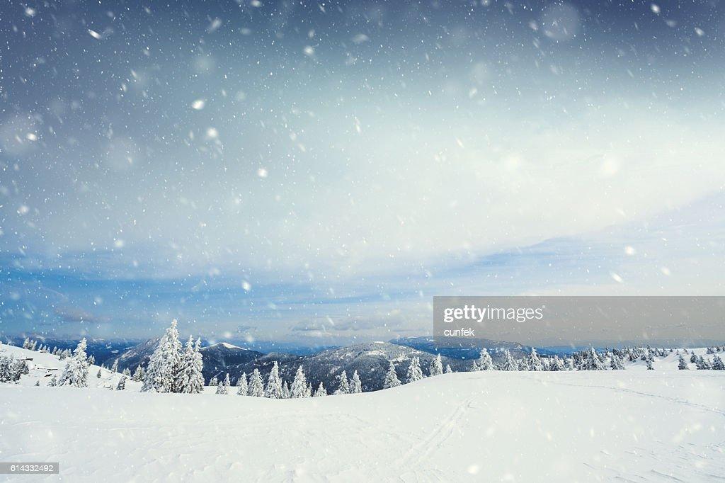 Schneesturm  : Stock-Foto