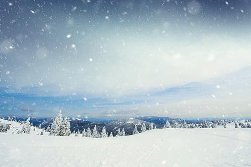 Snow Storm 614332492