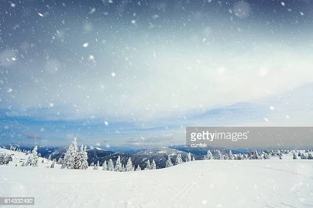 snow storm - landscape scenery stock photos and pictures