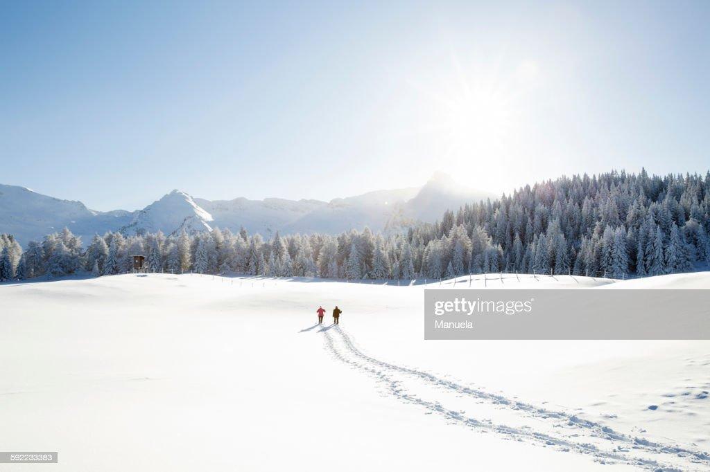 Snow tracks of senior couple walking to trees and mountain range, Sattelbergalm, Tyrol, Austria : Stock-Foto