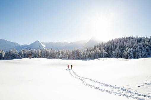 Snow tracks of senior couple walking to trees and mountain range, Sattelbergalm, Tyrol, Austria - gettyimageskorea