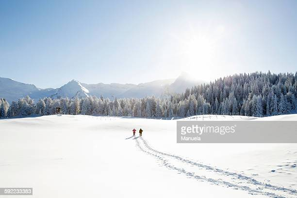 Snow tracks of senior couple walking to trees and mountain range, Sattelbergalm, Tyrol, Austria