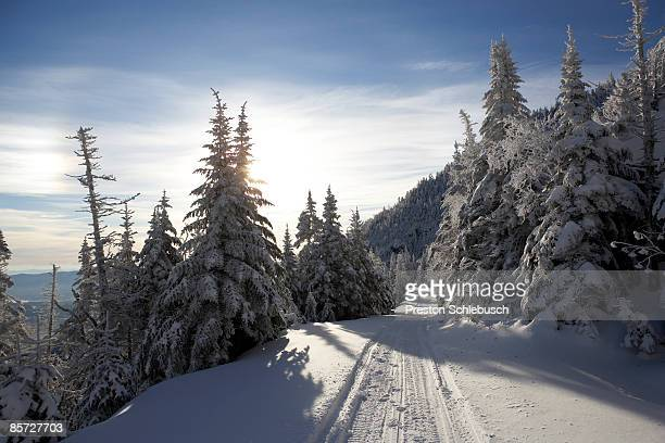 snow trail in stowe, vermont - schlebusch stock pictures, royalty-free photos & images