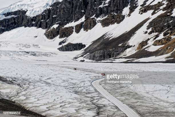 snow vehicles on the athabasca glacier, part of the columbia icefield in jasper national park, alberta, canada - columbia icefield stock pictures, royalty-free photos & images