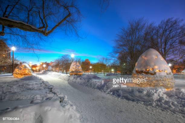 Snow we got in Boston
