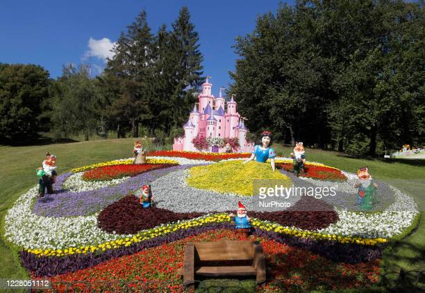 832 Cartoon Flowers Photos And Premium High Res Pictures Getty Images