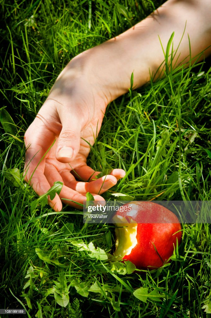 snow white : Stock Photo