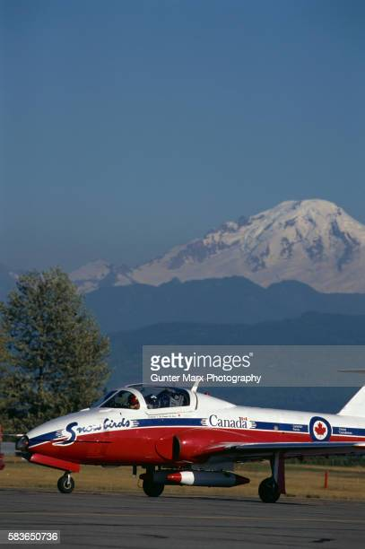 snowbird jet at air show - canadian forces snowbirds stock pictures, royalty-free photos & images