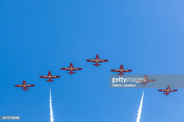 snowbirds in blue sky - canadian snowbird stock pictures, royalty-free photos & images