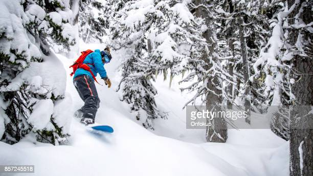 snowboarder in action in fresh powder snow - boarding stock pictures, royalty-free photos & images