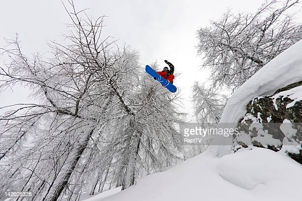 Snowboarder riding in snowy forest