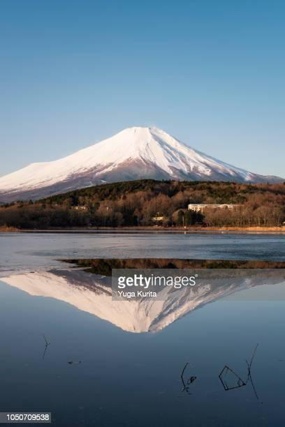 Snowcapped Fuji-san Reflected in a Half-Frozen Lake