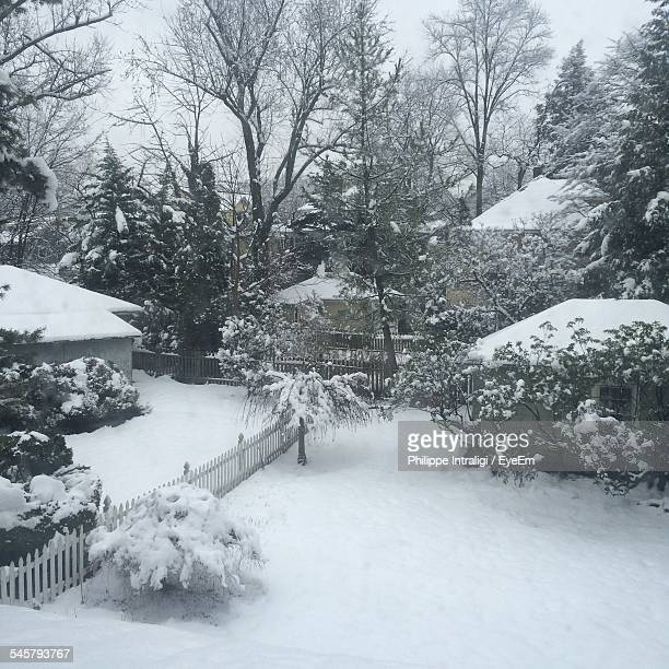 Snowcapped Houses And Trees During Winter