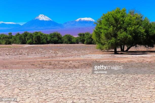 Snowcapped Licancabur and Juriques volcanoes, Atacama Desert –  Chile