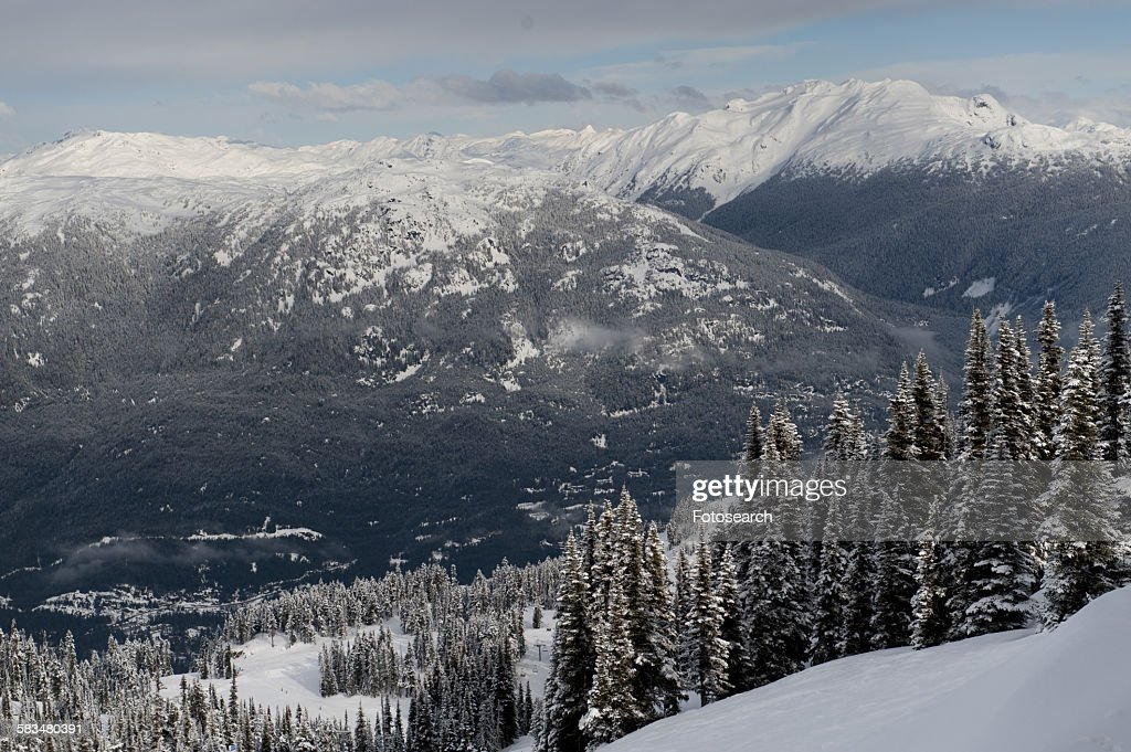 Snowcapped mountain range in Whistler : Stock Photo