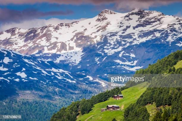 シャレーと納屋とステルヴィオ国立公園の雪に覆われた山々 - ヴァルフルヴァ、 イタリアアルプス - ロンバルディア州 ストックフォトと画像