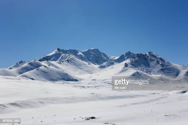 snowcapped mountains in the pamirs plateau,xinjiang,china - tundra stock pictures, royalty-free photos & images