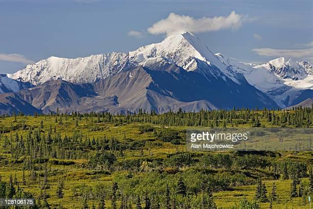 snowcapped peaks of the central alaska range. usa - paisajes de alaska fotografías e imágenes de stock