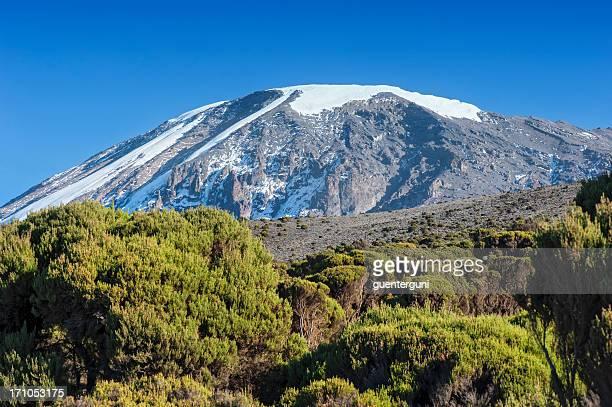 Snowcapped summit of Mount Kilimanjaro, Tanzania