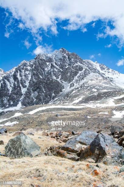 snow-capped tianshan mountains in summer - tien shan mountains stock pictures, royalty-free photos & images