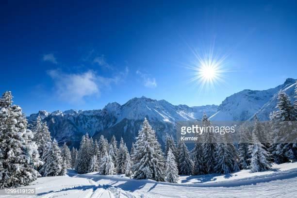 schneebedeckte bäume im skigebiet am wintermorgen - kemter stock-fotos und bilder