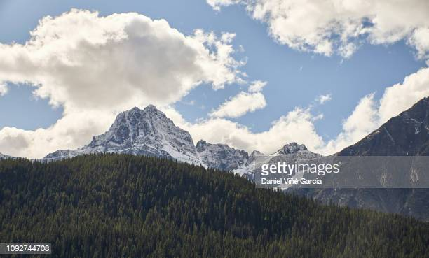 snow-covered mountain peaks in autumn, banff national park, canada. - canadian rockies stock pictures, royalty-free photos & images
