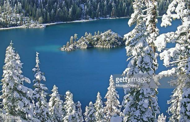 Snow-covered Pines, Sapphire Lake