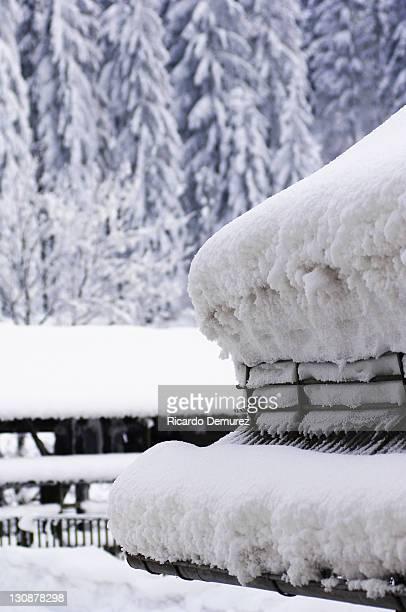 Snow-covered roof, Gosau, Salzkammergut, Upper Austria, Austria, Europe