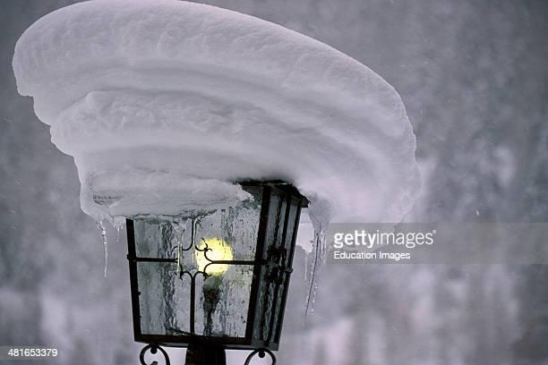 Snowcovered Street Lamp Mitten Wald