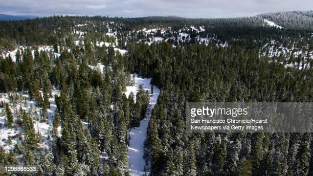 Snow-covered trees along E. Hyatt Lake Rd in the Cascade-Siskiyou National Monument outside of Hyatt Lake, Ore., on Tuesday, February 20, 2018. The...