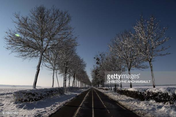 TOPSHOT Snowcovered trees line a road outside Chevilly near Orleans some 120 km south of Paris on February 8 2018 / AFP PHOTO / CHRISTOPHE ARCHAMBAULT