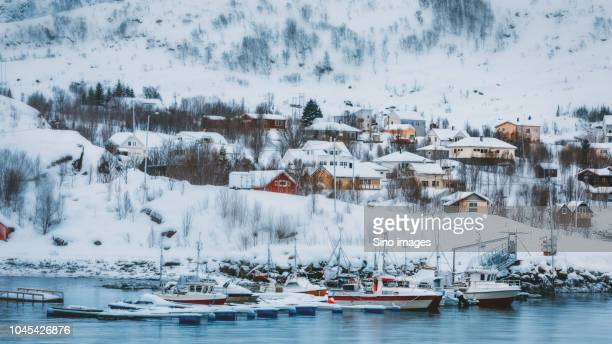 snow-covered village at foot of hill by lake, norway - image stockfoto's en -beelden