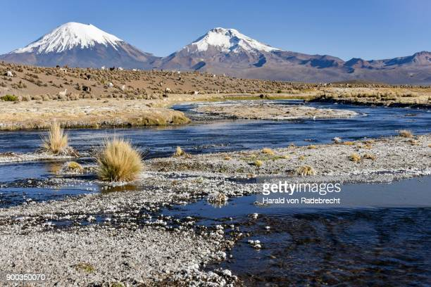 Snow-covered volcanoes Pomerape and Parinacota with icy river, Sajama National Park, Bolivian border, Chile