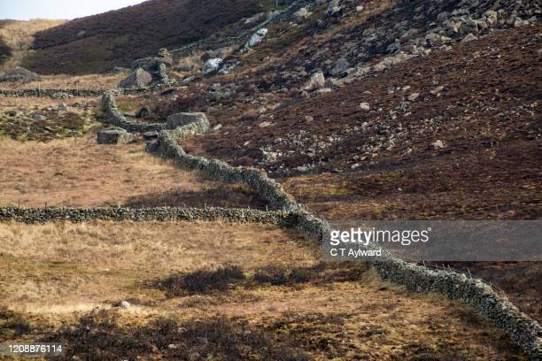 snowdonia stone walls - dry stock pictures, royalty-free photos & images