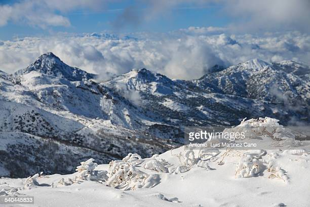 snowfall in sierra nevada - granada spain stock pictures, royalty-free photos & images