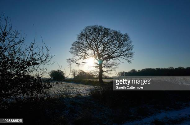 Snowfall in the Essex countryside on January 25, 2021 in Bishop's Stortford, Essex, United Kingdom. Parts of the country saw snow and icy conditions...
