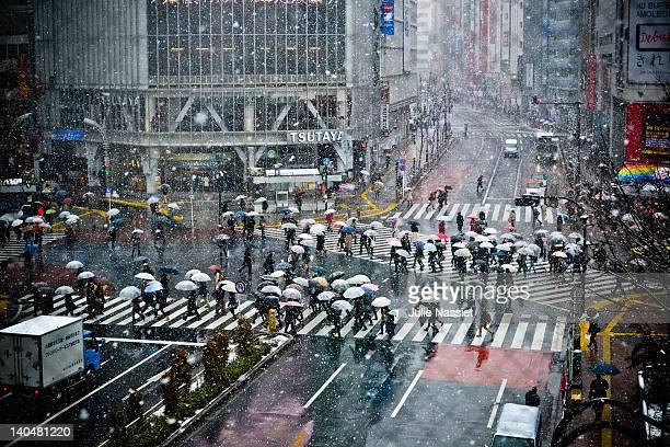Snowfall on Tokyo street