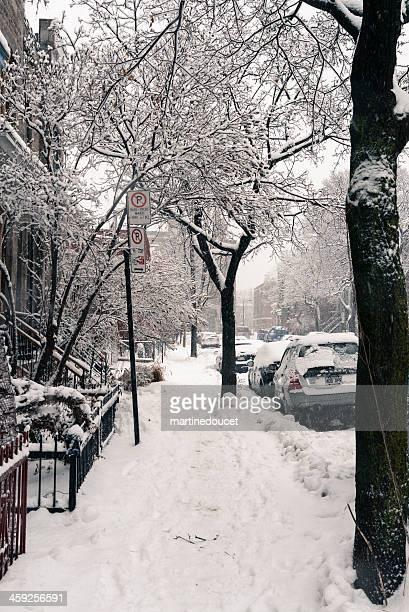 "snowfall warning on montreal, quebec, canada, vertical. - ""martine doucet"" or martinedoucet stockfoto's en -beelden"