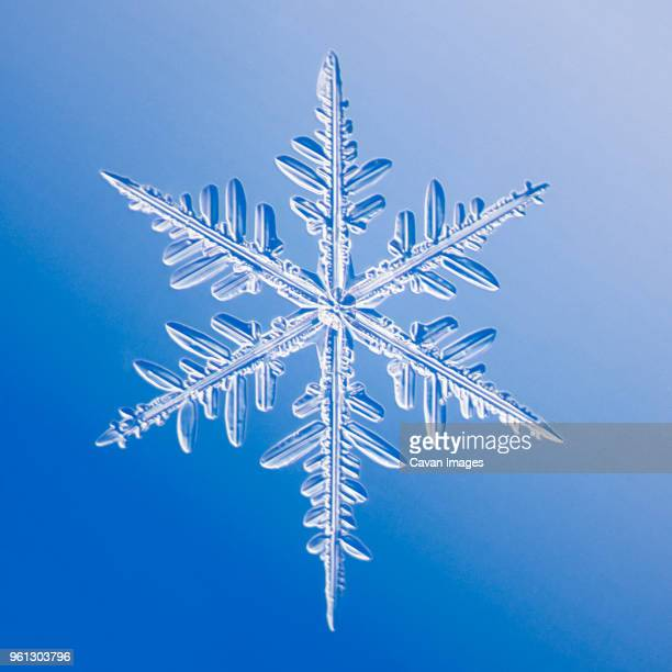 snowflake against blue background - snowflakes stock photos and pictures