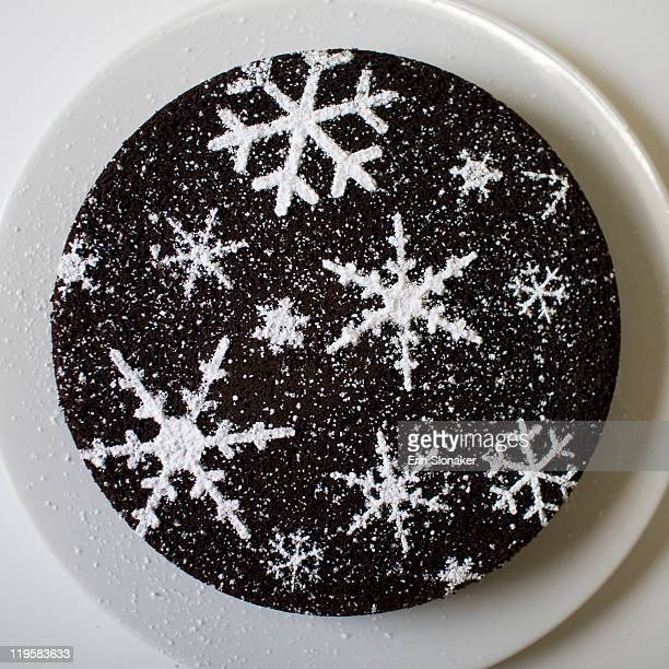 Snowflake dusted cake