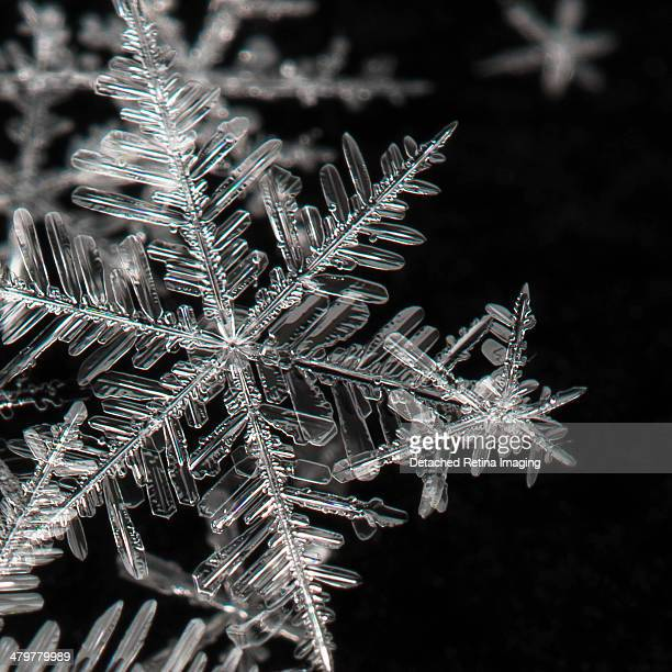 snowflake january - snowflakes stock photos and pictures
