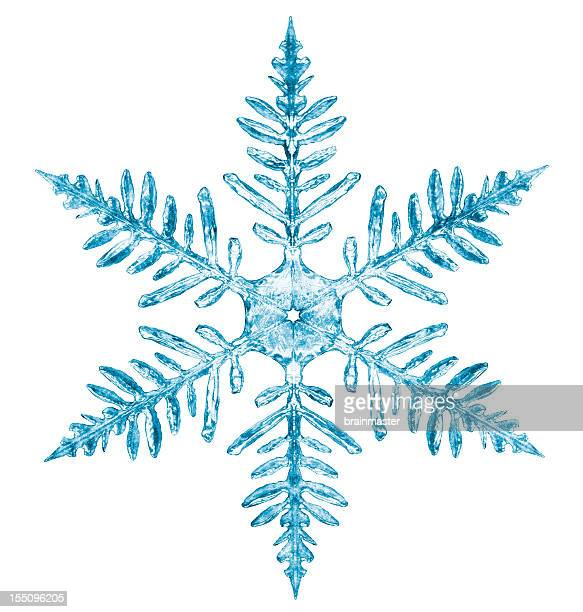 snowflake - snowflakes stock photos and pictures