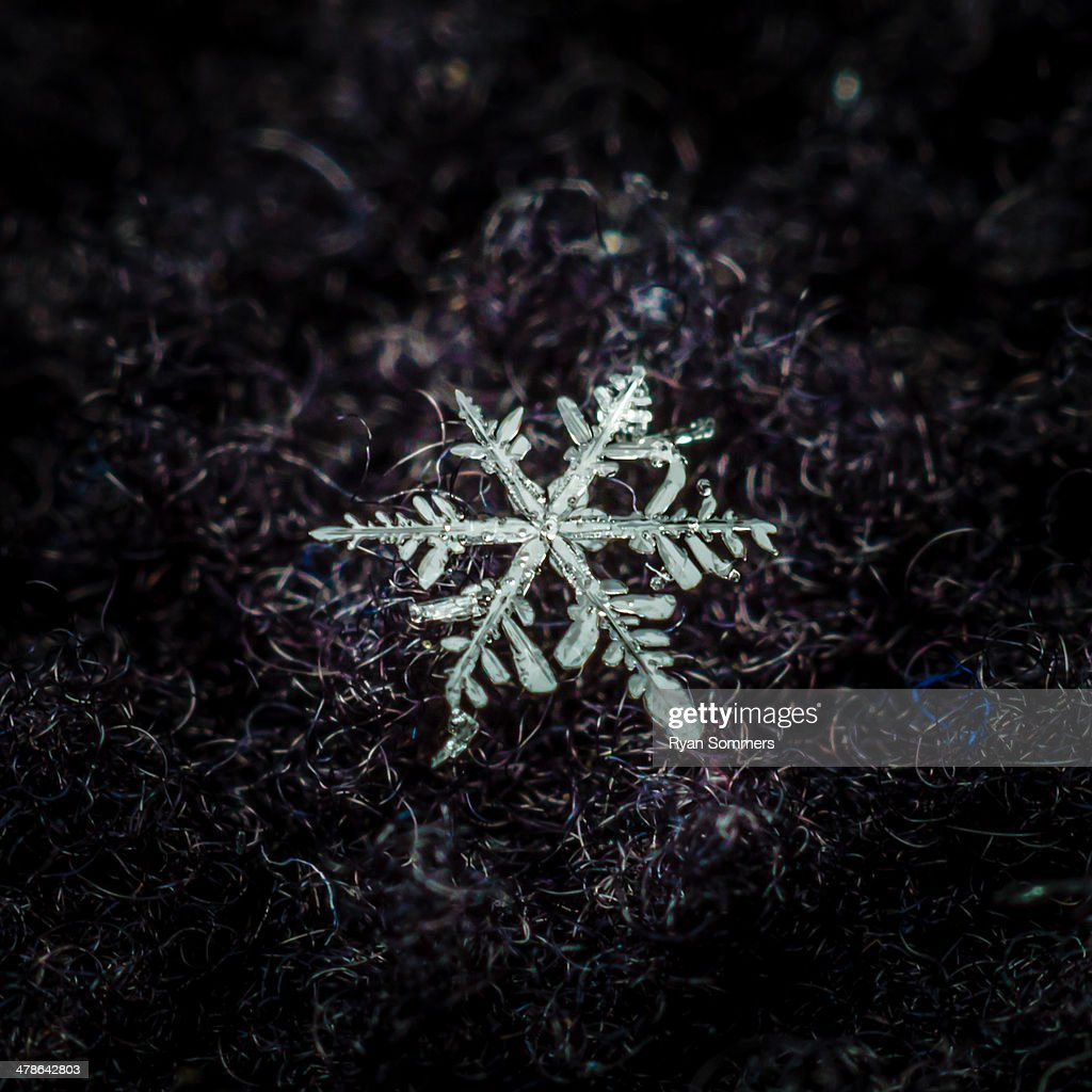 Snowflake #1 : Stock Photo