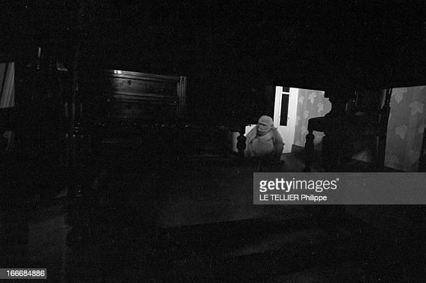 Snowflake The Albino Gorilla Le 3 mars 1967 en Espagne le gorille blanc albinos de 18 mois dans la maison du docteur Luera le directeur du zoo de...