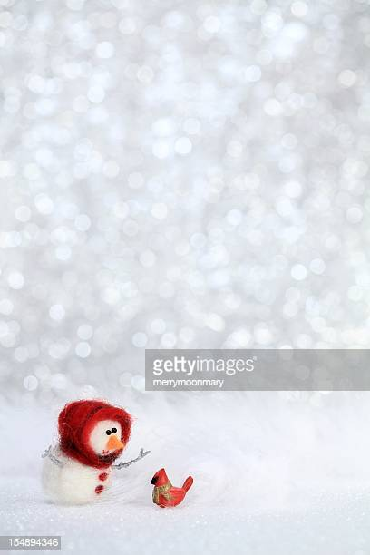 Snowgirl and red bird