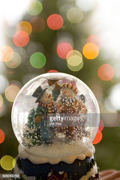 Snowglobe in front of Christmas Tree