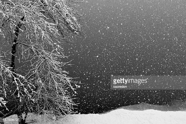 Nevicata sul lago