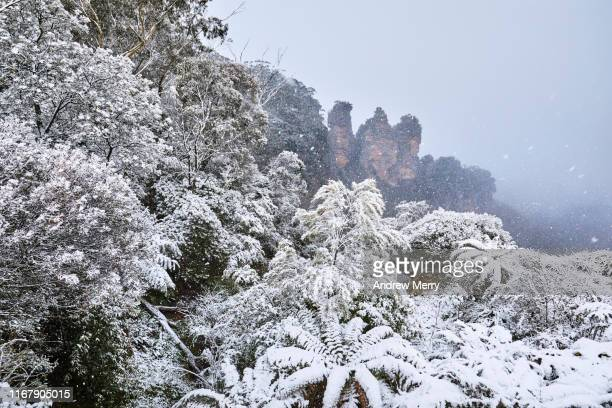 snowing at the three sisters, katoomba, blue mountains, australia - blue mountains national park stock pictures, royalty-free photos & images
